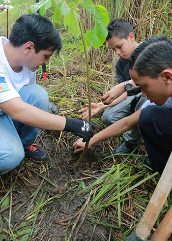 Youth volunteers participate in 2016 National Reforestation Day events.